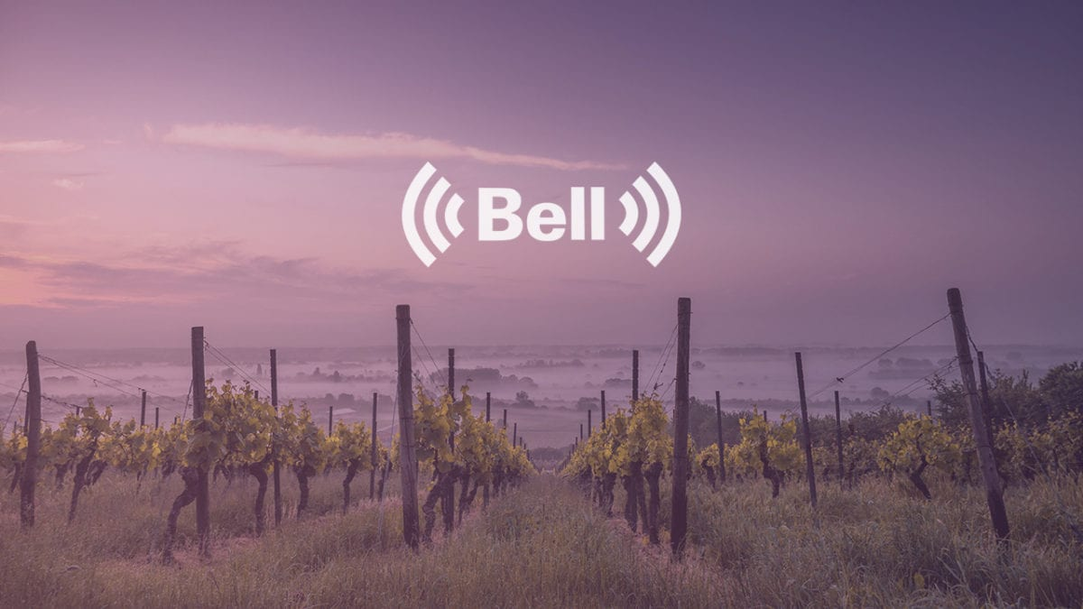 Ontario Winery Testing Bell Canada's 'Internet of Things' Tech