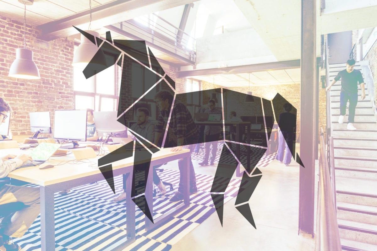 Five Unicorn Start Ups of 2020